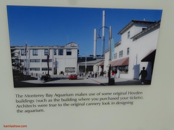 Monterey-8